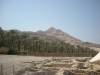En Gedi - Holy Land Tours