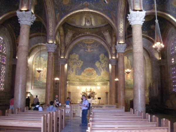 Garden of Gethsemane - Holy Land Tours