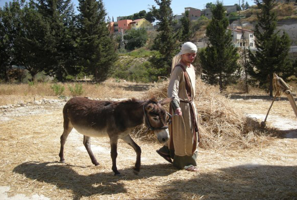Nazareth Village - Home Page - Holy Land Tours