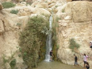 Visit En Gedi - Holy Land Tours