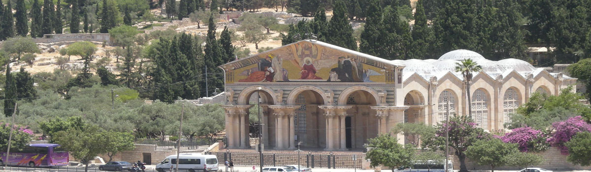 garden of gethsemane - Visit the Garden of Gethsemane - Holy Land Tours